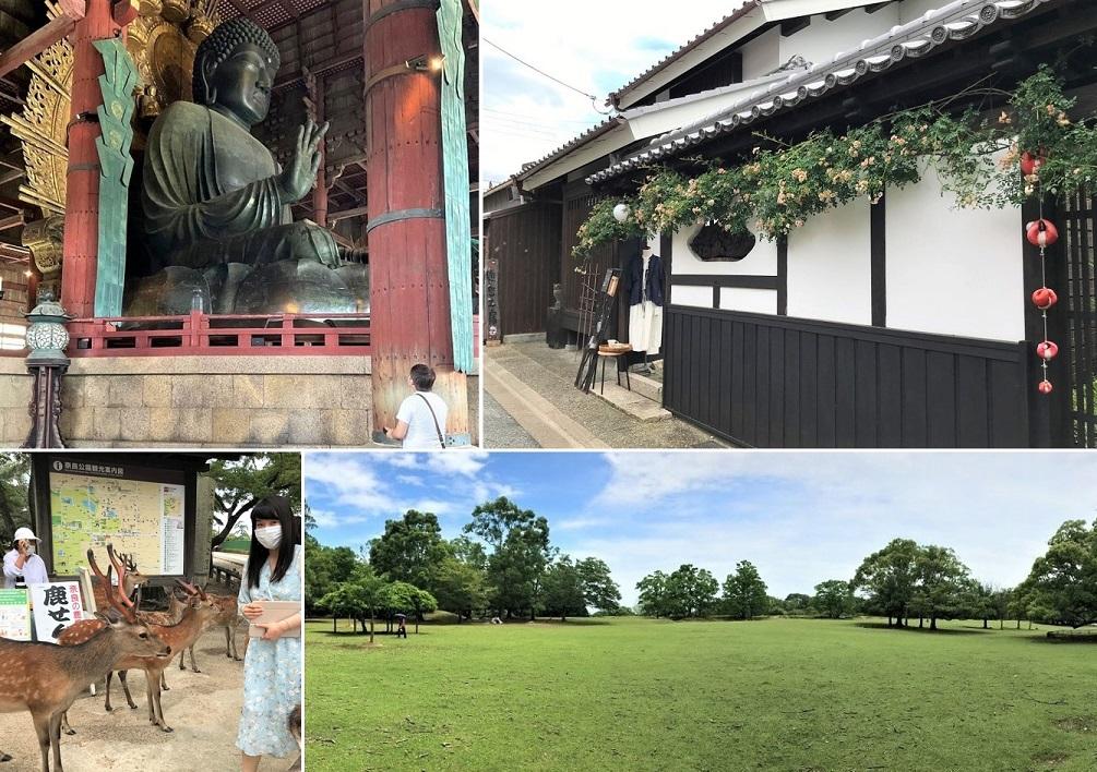 奈良観光ブログ-00:Top 00